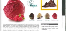 Sorbet Framboise – Vegan