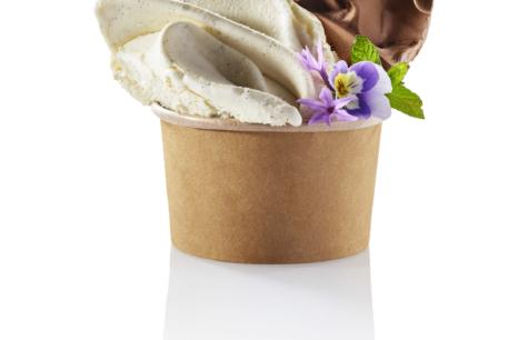 Bouquet de glaces au lait frais Vanille à l'infusion de gousses Bourbon et Chocolat noir G...